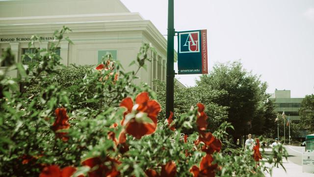 AU School of Education